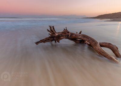 Driftwood on beach, Costa Blanca